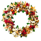 Wreath with Coral and Red Berries — Stock Photo