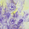 Lavender Roses — Stock Photo