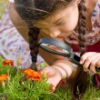 Stock Photo: Girl sees flowers through magnifying glass