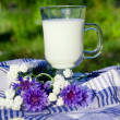 Glass of milk and bouquet of cornflowers - Stock Photo