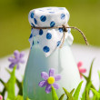 Bottle of milk in decorative basket with flowers — Stock Photo #31019949