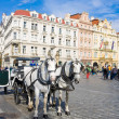 Old Town square in Prague, Czech Republic. Horse drawn carriage — Stock Photo #34303495