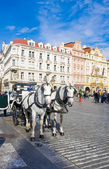 Old Town square in Prague, Czech Republic. Horse drawn carriage — Stock Photo