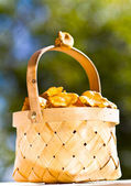 Basket of chanterelle on wooden background — Stockfoto