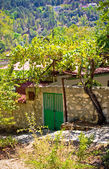 Entrance to the house with vineyard. Mountain Village Pedoulas, Cyprus in summer — Stock Photo