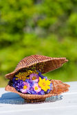 Bouquet of bright wildflowers in wicker shell — Stock Photo