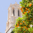 Stock Photo: View of dome of Cathedral of Tarragonwith tangerines, Spain