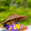 Stock Photo: Bouquet of bright wildflowers in wicker shell
