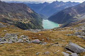 Neves water reservoir in northern Italy embedded in mountain scenery — Stock Photo