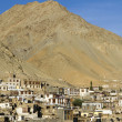 Town of Leh, capital of Ladakh, India — Stock Photo #14850667