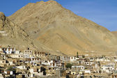 Town of Leh, capital of Ladakh, India — Photo