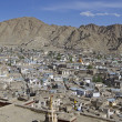 Overlooking Leh, capital of Ladakh, India — Stock Photo #14895099