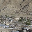 Overlooking Leh, capital of Ladakh, India — Stock Photo #14895109
