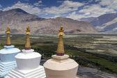 Trois stupas (gompa) au ladakh, Inde — Photo