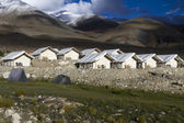 Tented tourist camp on lake pangong, Ladakh, India — Stock Photo