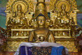 Buddha Statue in a temple in Ladakh, India — Stock Photo