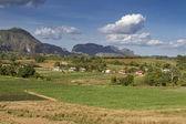 Typical cuban landscape near Vinales — Stock Photo