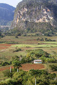 Typical cuban landscape near the town of Vinales — Stock Photo