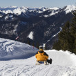 Sledding down Wallberg moutain, Bavaria — Stock Photo
