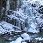 Partnachklamm gorge in Bavaria, Germany, in winter — Stock Photo #21984297