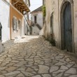 Stock Photo: Picturesque alley in mountain village on Corfu, Greece