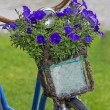 Vintage bicycle with flowers in a basket — Stock Photo #34808419