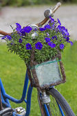 Vintage bicycle with flowers in a basket — Stock Photo