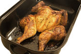 Flat roasted whole chicken in a roaster — Stock Photo