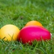 Colored easter eggs on a lawn — Stock Photo #9201438