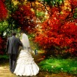 Autumn. The bride and groom — Stock Photo #10941906