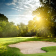 Golf course — Stock Photo #12080465