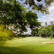 Golf course — Stockfoto #12080797