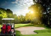 Carrello da golf — Foto Stock