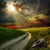 Road at sunset — Stock Photo