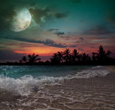 Moon, ocean and palm trees — Stock Photo
