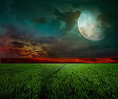 Rural night with moon — Stock Photo