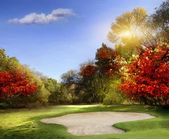 Golf course — Foto Stock
