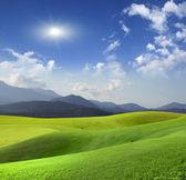 Prairie de montagne — Photo