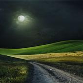 Noche sobre un campo — Foto de Stock
