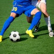 Soccer — Stock Photo #15603863