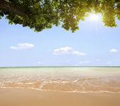 Beach .. — Stock Photo