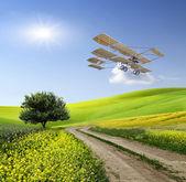Vintage flygplan över det gröna fältet — Stockfoto