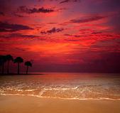 Beach .. — 图库照片