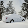 Car covered with snow in the forest — Stock Photo #18718817