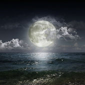 Moon reflecting in a lake — Stock Photo