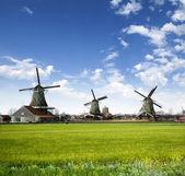 Młyny w wiosce Holandii — Zdjęcie stockowe