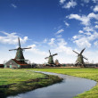 Mills in Holland Village - Stock Photo