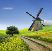Moulin à vent traditionnel dans la campagne — Photo