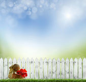 Springold white fence — Stock Photo