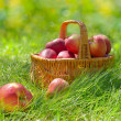 Red and yellow apples in the basket — Stock Photo